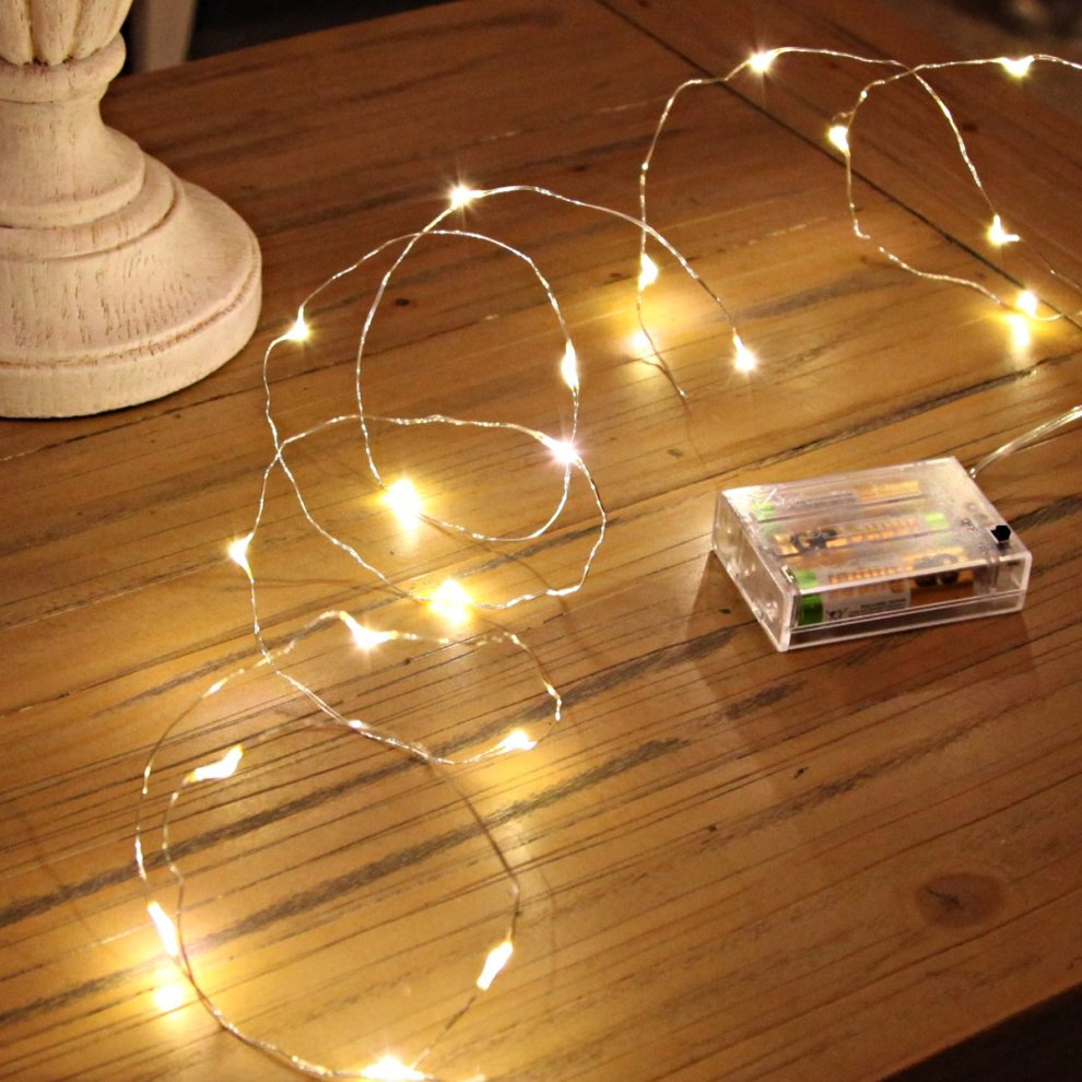 20-led-micro-silver-wire-indoor-battery-operated-firefly-string-lights-by-festive-lights-warm-white